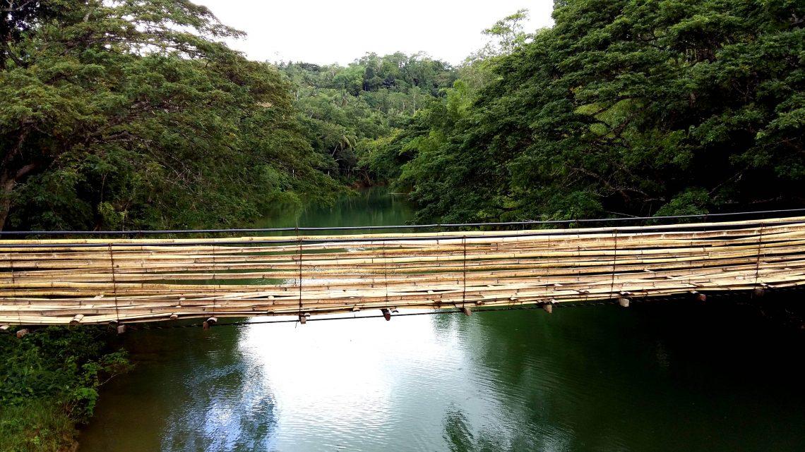 Puente de bambú en bohol