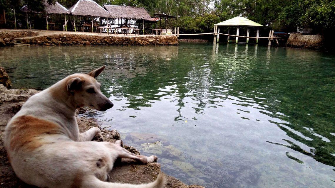 manantial Obong en la isla de cebu