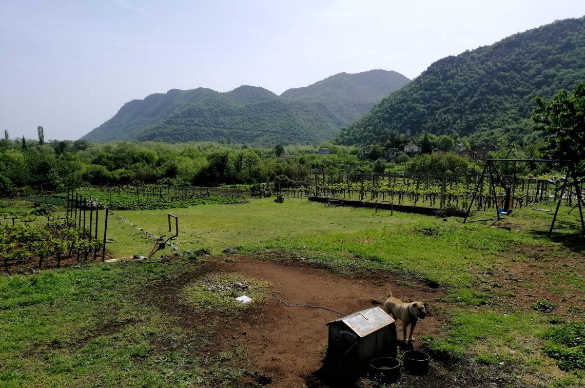 Alojamiento rural en Virpazar