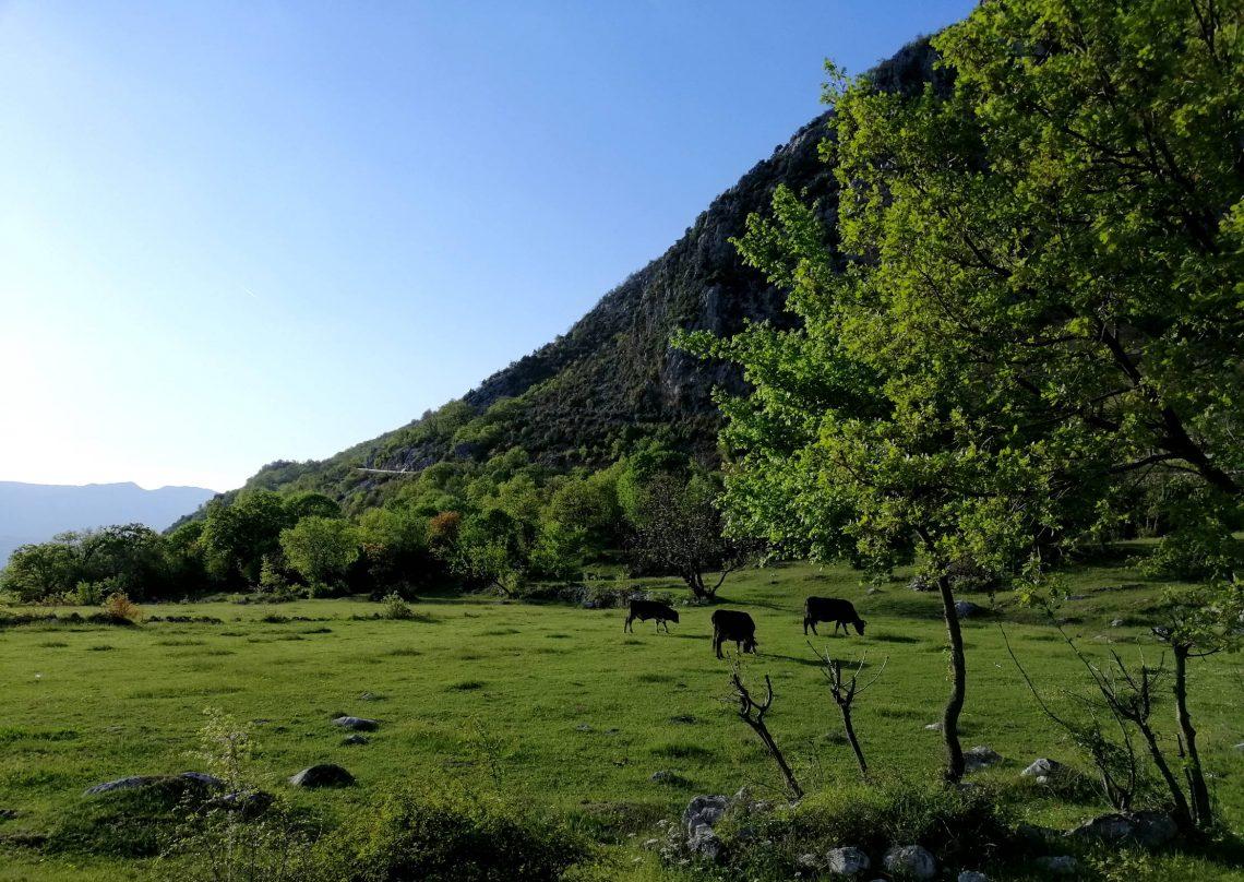 naturaleza al viajar a montenegro