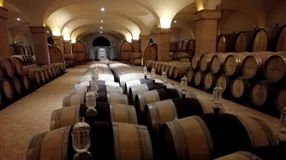ruta de vinos por toscana bodega