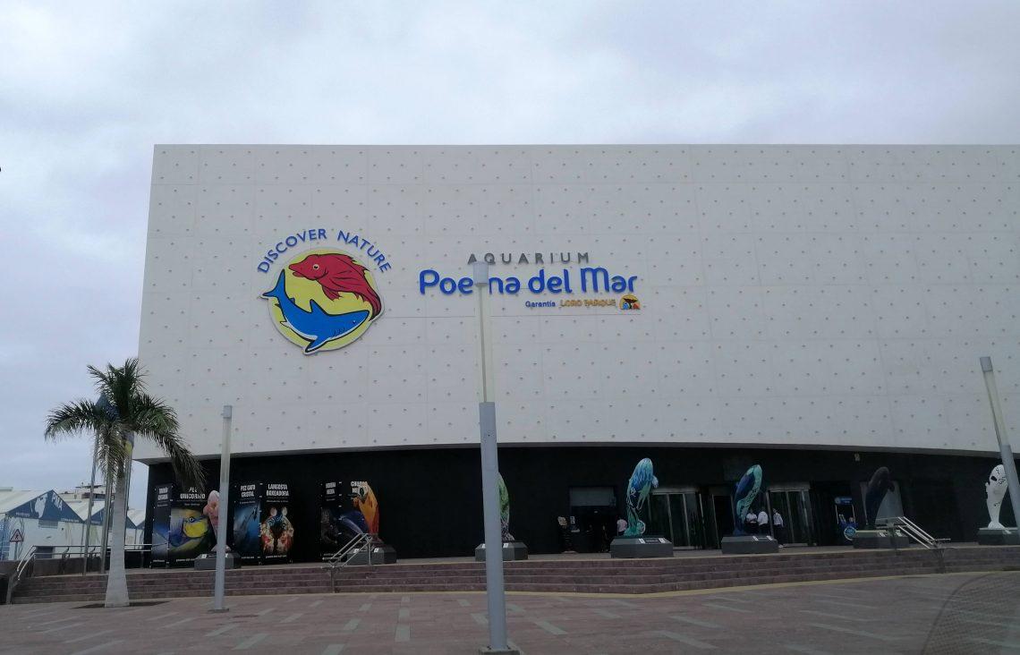Acuario que ver en Las Palmas: Poema de Mar.