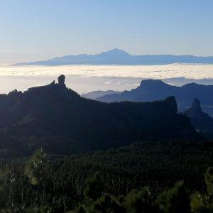 Zonas donde alojarse en Gran Canaria